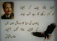 Allama Iqbal poetry about Shaheen Ali Quotes, Book Quotes, Qoutes, Iqbal Poetry In Urdu, Iqbal Shayari, Love My Parents Quotes, Inspirational Quotes For Students, Allama Iqbal, Pakistan Army
