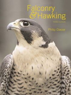Falconry and Hawking by Phillip Glasier…