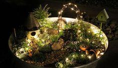 Mini-Garten: Selbst gestalten!   Bakker.com