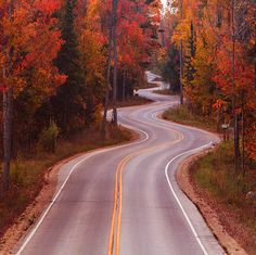 Curves by Vansh Visuals ~ Door County Wisconsin - family vacation 2015 baby! Door County Wisconsin, October Country, Autumn Cozy, Autumn Fall, Autumn Forest, Winding Road, Autumn Leaves, Golden Leaves, Landscape Photography