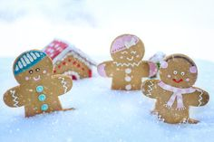 There are some recipes that we turn to again and again in the run up to Christmas. Some of those in my house are Christmas Cake, Christmas Pudding and Mince Pies. Very traditional. We are now 12 days out from the big day and I am happy to present to you five recipes that I believe are must-haves this festive season. Hope you enjoy! Amy … Christmas Pudding, Christmas Cookies, Gingerbread Man, Gingerbread Cookies, Prague Christmas, Christmas Eve, Christmas Recipes, Traditional Christmas Food, Vanilla Rum
