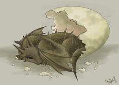 aww baby dragon hatchling