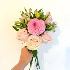 13/08/15 Blooms. Send in London for just £18 inc delivery