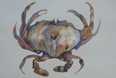 Paintings - prices include courier with in New Zealand, please contact me for overseas postage options. New Zealand Landscape, Artist Painting, Moose Art, Animals, Paintings, Color, Youtube, Animales, Animaux