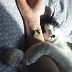 cat tattoo-ideas-wrist-black-w . katzen-tattoo-ideen-handgelenk-schwarz-w… cat tattoo-ideas-wrist-black-white-portrait Tattoo Gato, Cute Cat Tattoo, Kitty Tattoos, Tattoo Ink, Tattoo Shop, Tiny Cat Tattoo, Cat Paw Print Tattoo, Cat Outline Tattoo, Raccoon Tattoo