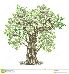 tree image graphic - Google Search