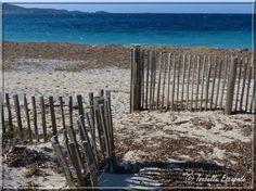 Presqu'île de Giens http://www.my-art.com/isabelle-escapade/collections/provence
