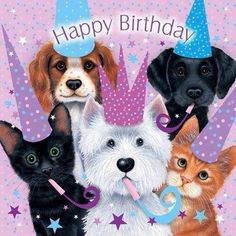 Adorable Happy Birthday Quote With Pets birthday happy birthday happy birthday wishes birthday quotes happy birthday quotes birthday quote happy birthday quotes for friends happy birthday quotes for family cute happy birthday quotes Dog Birthday Wishes, Happy Birthday Art, Birthday Clips, Happy Birthday Pictures, Happy Birthday Messages, Cat Birthday, Happy Birthday Greetings, Animal Birthday, Dog Birthday Quotes