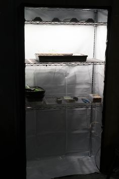 Build a DIY Grow Tent for Under $100 - LED Gardener Strong Tape, Make A Door, Grow Tent, Temperature And Humidity, Plant Shelves, Wire Shelving, Lighting System, Grow Lights, Indoor Garden