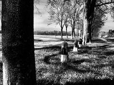 Da war mal ein Weg.  Hochzoll-Süd.  #baum #tree #markierung #blogger #photographer #fotograf #picoftheday #Augsburg #München #Munich #Bayern #Bavaria #Göggingen