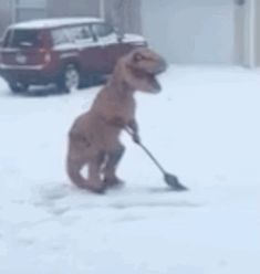 Just because there was a massive snow storm does not mean the fun has to end. People avoided cabin fever in some traditional - and downright strange - ways, including a T-Rex shoveling snow.