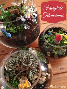 Fairytale Terrariums_My Little Bookcase Snow White, Rapunzel, Little Red Riding Hood are story examples for these cute story terrariums. Fun for kids. http://www.mylittlebookcase.com.au/showcase/feature-posts/how-to-make-a-fairytale-terrarium/