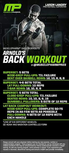 Workout for the Back Arnold Back Workout, Big Back Workout, Back Workout Routine, Good Back Workouts, Leg Routine, Chest Workouts, Back Exercises, Summer Workouts, Gym Workouts