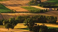 Rural colours of Le Marche - Italy