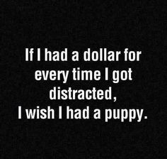 If I Had A Dollar For Every Time I Got Distracted