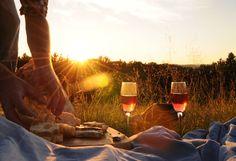 Um piquenique com vinhos.