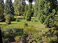 Aarhus Botanical Garden in Denmark.