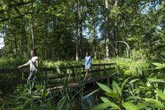 Wandeling van het jaar in Antwerpen: natuurpad Lovenhoek in Vorselaar