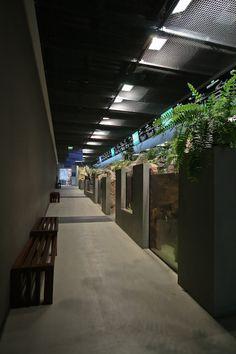 Gallery of Mora River Aquarium / Promontorio Architecture - 9