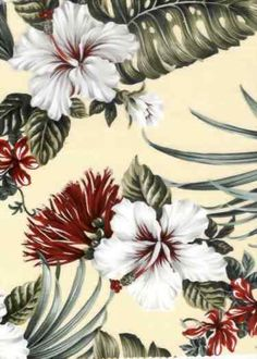Tropical Hawaiian Hibiscus with red & white plumeria flowers, cotton non-upholstery barkcloth fabric. Plumeria Flowers, Hawaiian Flowers, Paradise Flowers, Hawaiian Designs, Tropical Design, Vintage Hawaiian, Hawaiian Print, Love Wallpaper, Textiles