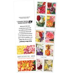 Botanical Art stamps as one of the brightest issue of the year 2016. 10 original items introduced by USPS…   Stampnews.com