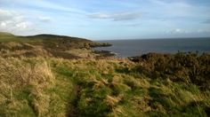 Looking back towards Portling on the Solway coast. March 2014