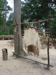 tanned hides set up outside Powhatan Indian village