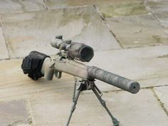 Suppressed bolt gun with accessories