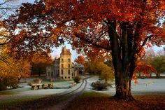 Top Spots to View Fall Foliage in Philadelphia (Photo by Reflections by Ruth)
