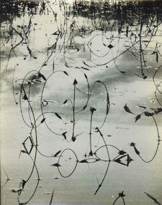 Lucien Clergue - L'eau 1960