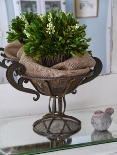 love everything about this....the iron...the burlap....the boxwood...from Chateau Chic