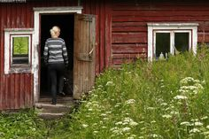 Pihasauna - piha sauna vanha hirsirakennus hirret rapistunut ränsistynyt ikkunat ovi