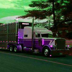 Custom Peterbilt Conventional Bull Hauler check out those Chicken Lights...  #peterbilt #kenworth #w900 #bigrigloyalty #streamline #semi #bigrigs #kw #largecars  #antiquetrucks #truckinausies #westernstar #freightliner #cabover #coe #trucklife #australianroadtransport #roadtrain #chickenlightsandchrome #volvo #kingoftheroad #mack #bigrigshots #trucking #truckin #outlaw #leftlanegang #usaworktrucks #bullshipper #flatbed