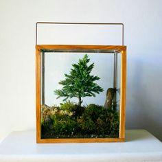 Image result for beetlejuice terrarium