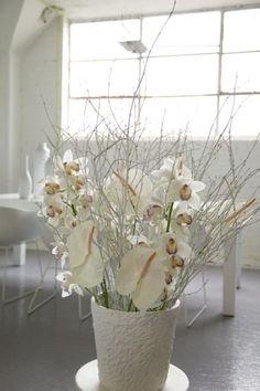 www.vmvj.fr - Cymbidium, white Anthurium © OHF
