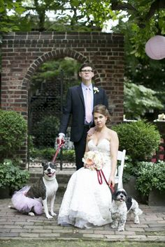 Family Wedding Portrait with Dogs | photography by http://lovemedophotography.com/