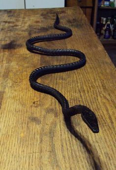 Sneaky Snake Hand Forged Garden Ornament-great for scaring birds away from your garden!