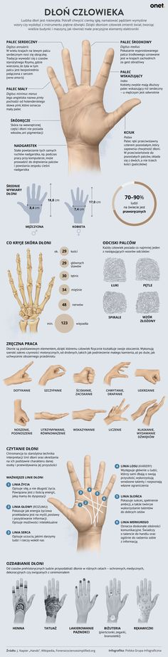 Dłoń Body Anatomy, School Staff, Health Diet, Life Lessons, Diy And Crafts, Life Hacks, Infographic, Diy Projects, Medical