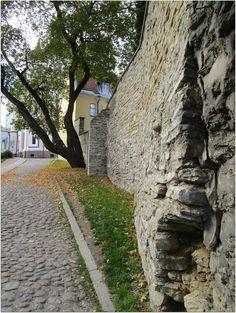 Portfolio Multimedeia 2: Tallinna taas kallellaan - keskiaikaan