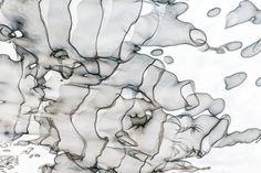 Inverted Reflection Abstract 173   by Craig Royal. #art #interiordesign #artist #abstractart #photography #modernart