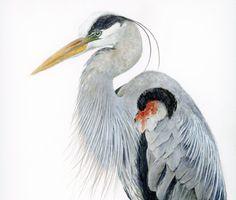 Watercolor bird print great blue heron painting by SRorickArt
