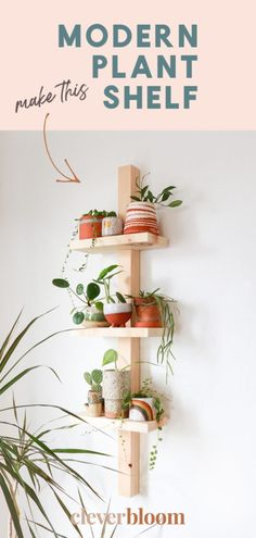 easy house plants Have you been looking for a cute modern shelf to display your plant collection? Look no further! This modern plant shelf is pretty easy to make and it can be made fo Fake Plants Decor, Cool Plants, Plant Decor, Easy House Plants, House Plants Decor, Plants For Kitchen, Indoor Plant Shelves, Indoor Plants, Plants On Shelves