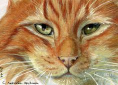 Ginger+Art | Ginger Cat Aceo Mixed Media