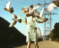 William Eggleston & Crow or Raven... http://www.pinterest.com/pin/249035054368941319/