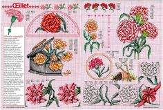 Gallery.ru / Фото #1 - Encyclopedie du point de croix ( Fleurs arbres et feuilles ) - tymannost
