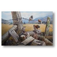 Image Vault Ltd is a distributor and publisher of fine-art prints, bespoke lampshades and wall decals. Meeting Place, Vaulting, Lampshades, New Zealand, Wall Decals, Fine Art Prints, Walls, Places, Image