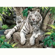 Diamond Embroidery painting animals tiger of Home Decor Diamond Mosaic Painting Pasted drills Pictures of tiger family Big Cats, Cats And Kittens, Cute Cats, Tiger Pictures, Animal Pictures, Nature Animals, Animals And Pets, Beautiful Cats, Animals Beautiful