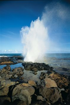 Blow Hole, Maui ~ so cool, amazing and dangerous to watch