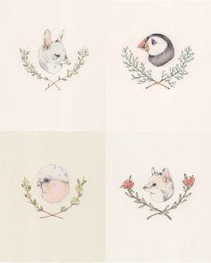animal portaits, simple illustrations