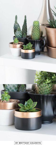 Tiny tea tin planter upcycle in 10 minutes